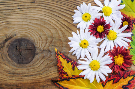 Beautiful and autumn composition on wooden background. photo