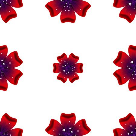 rad: Beautiful rad flower. Seamless floral pattern.  illustration Stock Photo