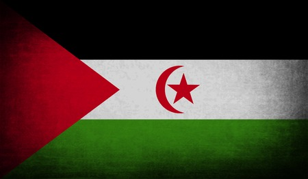landlocked country: Flag of Western Sahara with old texture. Vector illustration