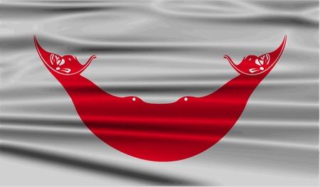 rapa nui: Bandera de Pascua Rapa Nui, CHILE con textura de edad. Ilustraci�n vectorial