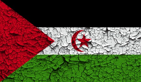 Flag of Western Sahara with old texture. Vector illustration Vector