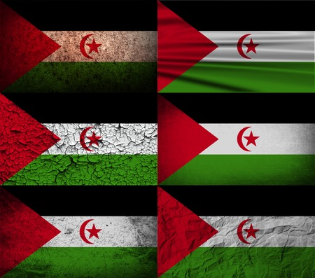 Flag of Western Sahara with old texture. Vector illustration