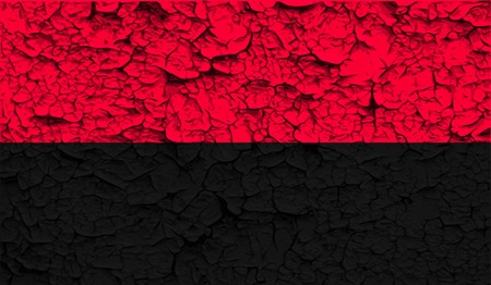 nationalists: Flag of ukrainian nationalists OUN-UPA with old texture.  illustration