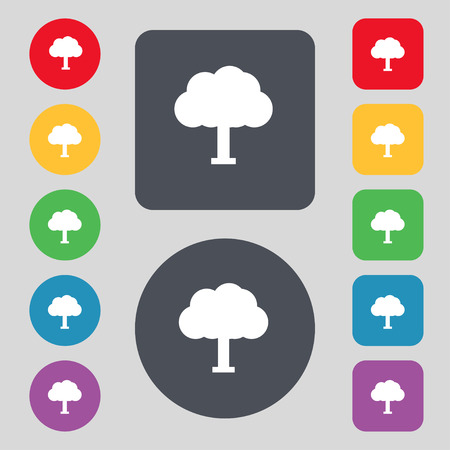coma: Tree, Forest icon sign. A set of 12 colored buttons. Flat design. Vector illustration Illustration