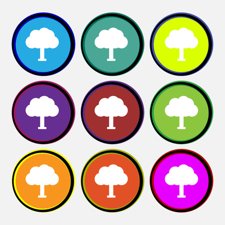 coma: Tree, Forest Illustration