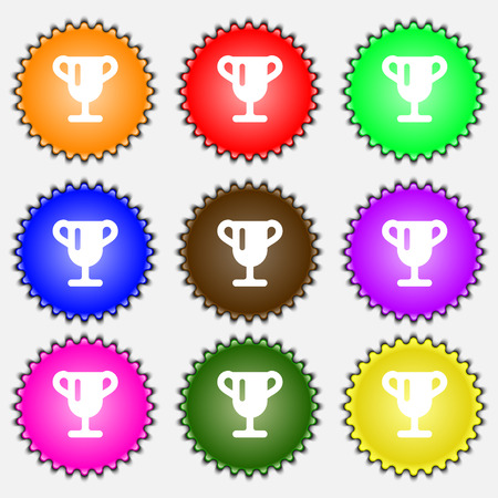 awarding: Winner cup, Awarding of winners, Trophy  icon sign. A set of nine different colored labels. Vector illustration