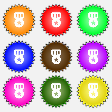 honor: Award, Medal of Honor  icon sign. A set of nine different colored labels. Vector illustration