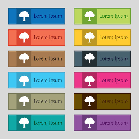 coma: Tree, Forest  icon sign. Set of twelve rectangular, colorful, beautiful, high-quality buttons for the site. Vector illustration