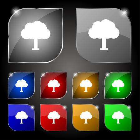 coma: Tree, Forest icon sign. Set of ten colorful buttons with glare. Vector illustration Illustration