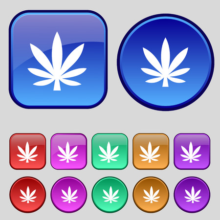 cannabinol: Cannabis leaf icon sign. A set of twelve vintage buttons for your design. Vector illustration