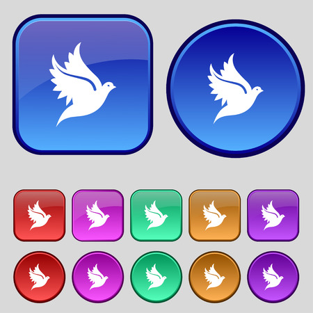 dove: Dove icon sign. A set of twelve vintage buttons for your design. Vector illustration