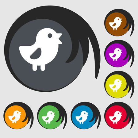 free range: chicken, Bird icon sign. Symbol on eight colored buttons. Vector illustration