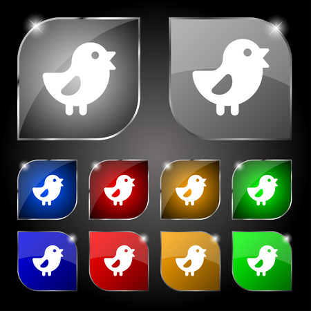 fertility emblem: chicken, Bird icon sign. Set of ten colorful buttons with glare. Vector illustration Illustration