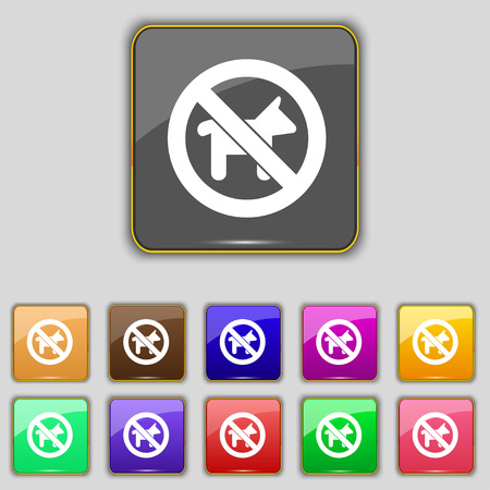 dog walking: dog walking is prohibited icon sign. Set with eleven colored buttons for your site. Vector illustration Illustration