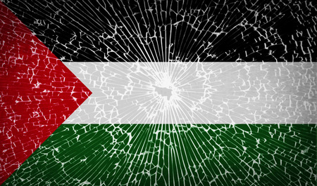 palestine: Flags of Palestine with broken glass texture. Vector illustration