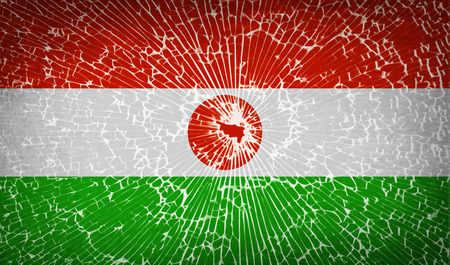correctly: Flags of Niger with broken glass texture. Vector illustration Illustration