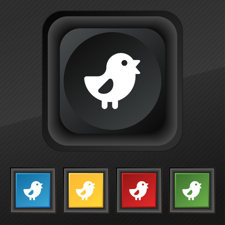 chicken, Bird icon symbol. Set of five colorful, stylish buttons on black texture Vectores