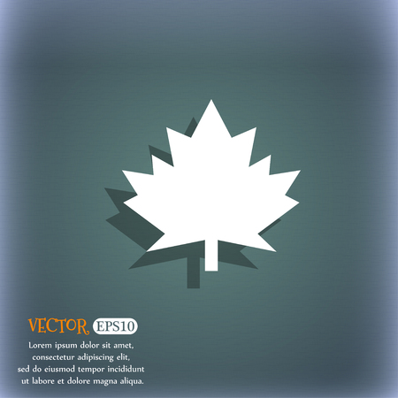 leaf line: Maple leaf icon. On the blue-green abstract background with shadow and space for your text. Vector illustration