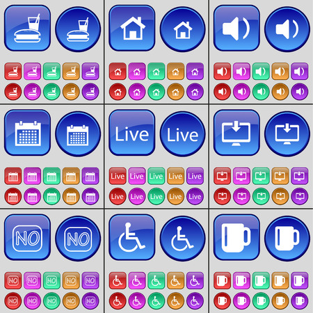 personne handicap�e: Food, House, Sound, Calendar, Live, Monitor, No, Disabled person, Cup. A large set of multi-colored buttons. Vector illustration
