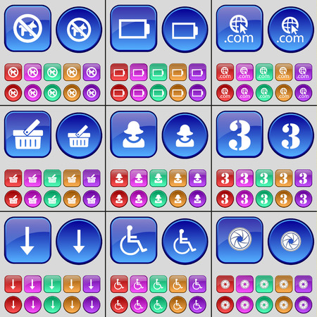 disabled person: No pets allowed, Battery, Domain, Basket, Avatar, Three, Arrow down, Disabled person, Lens. A large set of multi-colored buttons. illustration