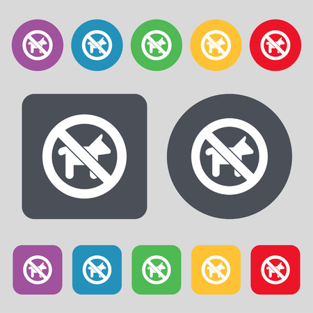 dog walking: dog walking is prohibited icon sign. A set of 12 colored buttons. Flat design. illustration Stock Photo