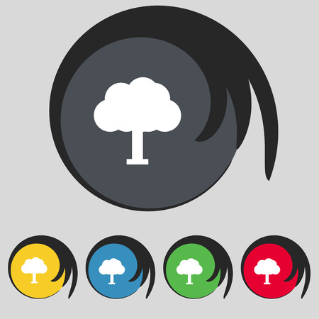 coma: Tree, Forest icon sign. Symbol on five colored buttons. illustration