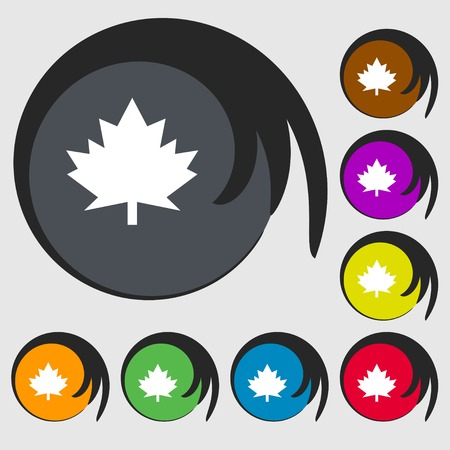 maple leaf icon: Maple leaf icon. Symbols on eight colored buttons. illustration Stock Photo