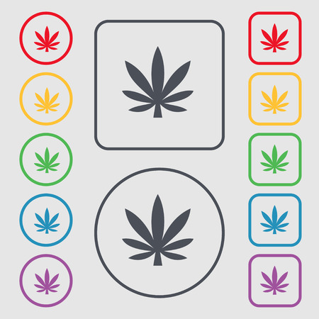cannabinol: Cannabis leaf icon sign. symbol on the Round and square buttons with frame. illustration Stock Photo