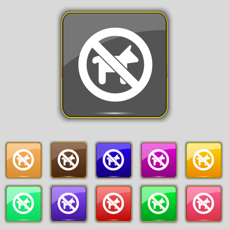 chromium: dog walking is prohibited icon sign. Set with eleven colored buttons for your site. illustration Stock Photo