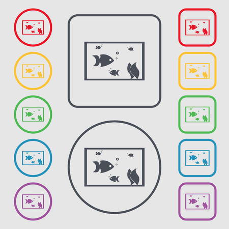 flipper: Aquarium, Fish in water icon sign. Symbols on the Round and square buttons with frame. illustration
