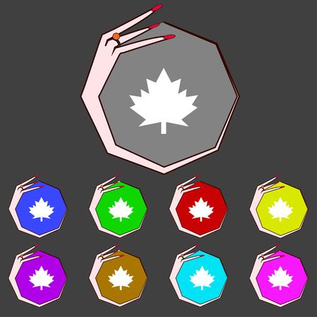maple leaf icon: Maple leaf icon. Set colourful buttons. illustration
