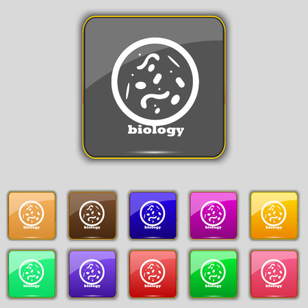 bacteria cell: bacteria and virus disease, biology cell under microscope icon sign. Set with eleven colored buttons for your site. Vector illustration Illustration