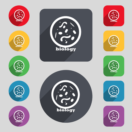 bacteria cell: bacteria and virus disease, biology cell under microscope icon sign. A set of 12 colored buttons and a long shadow. Flat design. Vector illustration