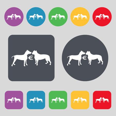 kampfhund: Wetten auf Hundekämpfe Symbol Zeichen. Ein Satz von 12 farbigen Tasten. Flaches Design. Vektor-Illustration