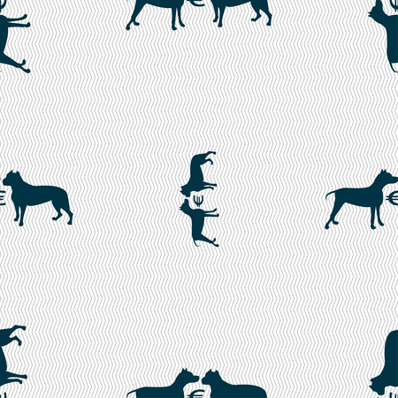 Betting on dog fighting icon sign. Seamless pattern with geometric texture. Vector illustration