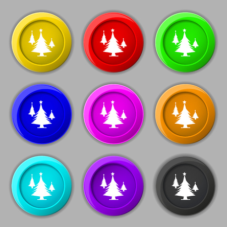 coniferous forest: coniferous forest, tree, fir-tree icon sign. symbol on nine round colourful buttons. Vector illustration