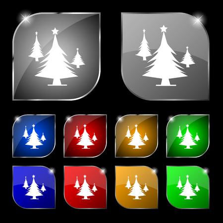 coniferous forest: bosques de coníferas, árbol, árbol de abeto icono de la muestra. Conjunto de diez botones de colores con reflejos. ilustración vectorial