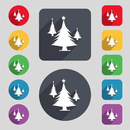 coniferous forest: bosques de coníferas, árbol, árbol de abeto icono de la muestra. Un conjunto de 12 botones de colores y una larga sombra. Diseño plano. ilustración vectorial