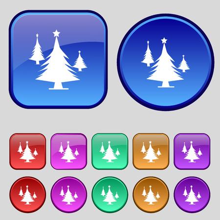 coniferous forest: bosques de coníferas, árbol, árbol de abeto icono de la muestra. Un conjunto de doce botones de época para su diseño. ilustración vectorial
