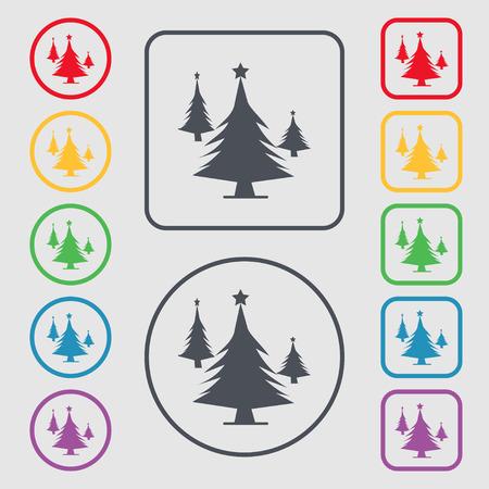 coniferous forest: bosques de coníferas, árbol, árbol de abeto icono de la muestra. símbolo en el botones cuadrados con Marco redondo y. ilustración Foto de archivo