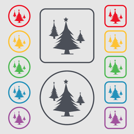 coniferous forest: coniferous forest, tree, fir-tree icon sign. symbol on the Round and square buttons with frame. illustration