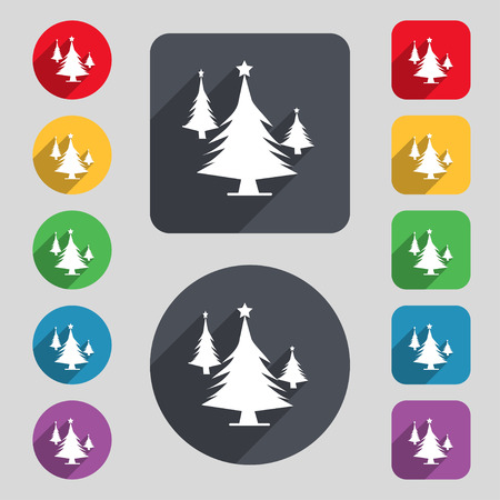 coniferous forest: coniferous forest, tree, fir-tree icon sign. A set of 12 colored buttons and a long shadow. Flat design. illustration