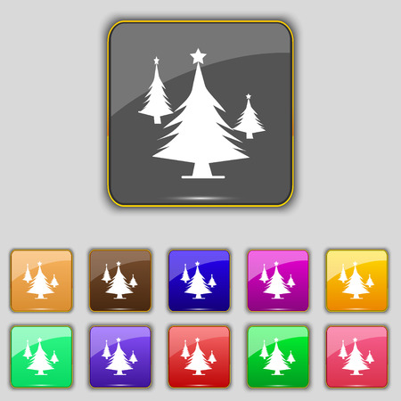 coniferous forest: coniferous forest, tree, fir-tree icon sign. Set with eleven colored buttons for your site. illustration