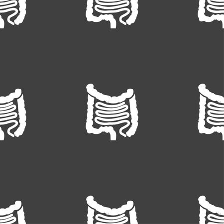 small bowel: Intestines Illustration