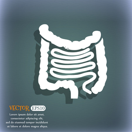transverse colon: Intestines Illustration