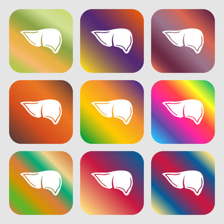 consept: Liver sign icon . Nine buttons with bright gradients for beautiful design. Vector illustration