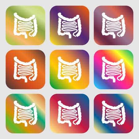 cecum: Intestines sign icon . Nine buttons with bright gradients for beautiful design. Vector illustration Illustration