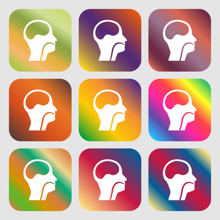 larynx: larynx, Medical Doctors Otolaryngology sign icon . Nine buttons with bright gradients for beautiful design. Vector illustration