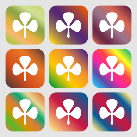 clover face: Clover sign icon . Nine buttons with bright gradients for beautiful design. Vector illustration
