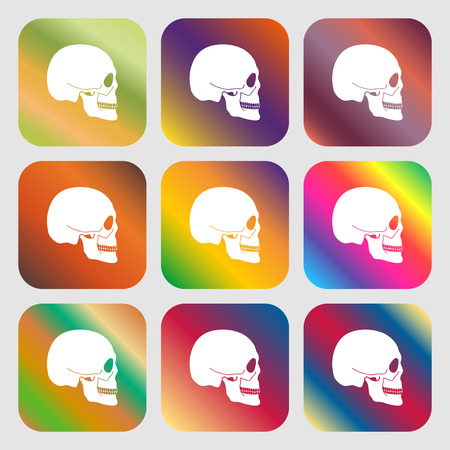 privateer: Skull sign icon . Nine buttons with bright gradients for beautiful design. Vector illustration